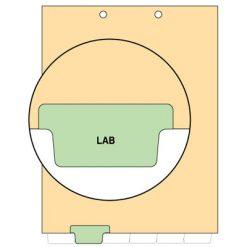 Lab Tab Index Chart Divider
