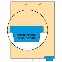 Consultation/Hosp. Report Tab Index Chart Divider