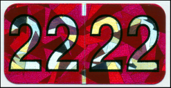 Traco Holographic 2022 Year code label